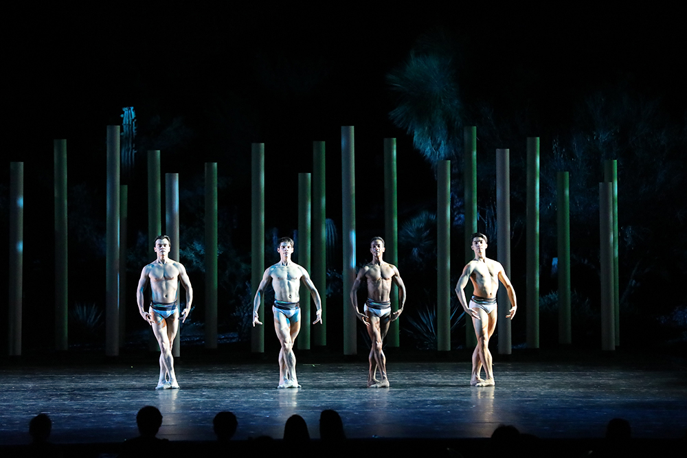 Appreciate ballet